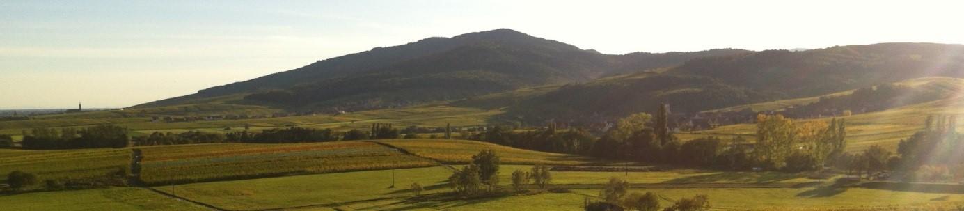 Pôle d'Equilibre Territorial et Rural du Piémont des Vosges